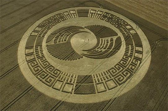 Image result for Crop Circles tandanya ada alien